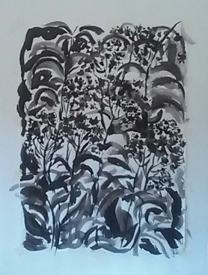 Eupatorium done in brush and ink.