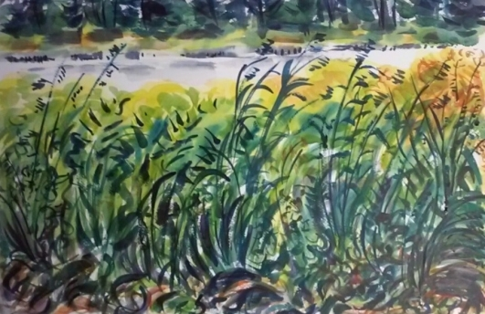 watercolor of pond at Field Farm