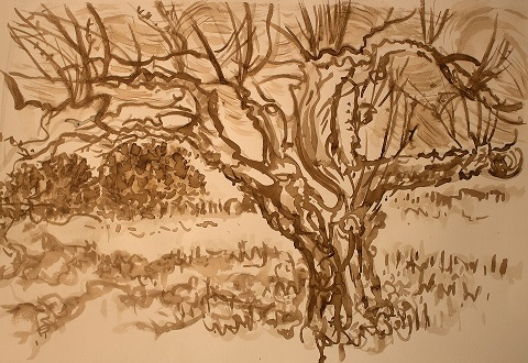 apple tree_small