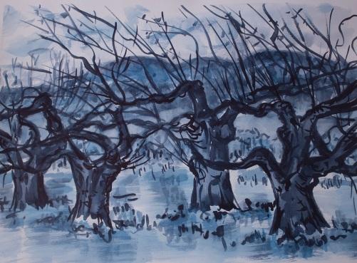 BlueTrees_small