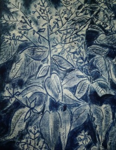 dark blue and off white trace monotype of woodland asters